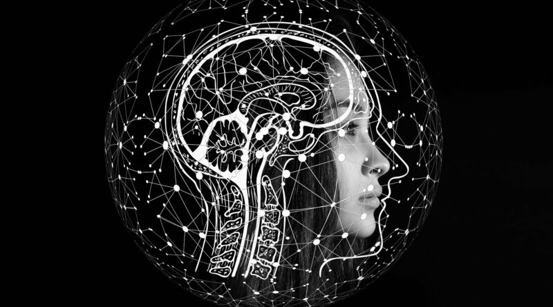 Das Gehirn als Sparringspartner