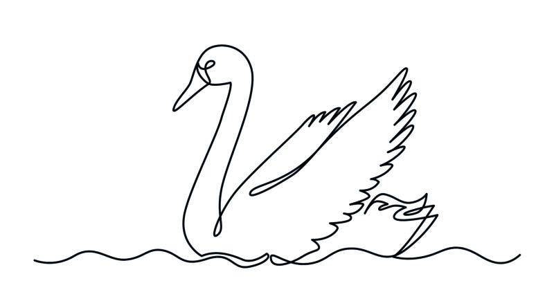 """Illustration eines Schwans zum Thema Krise: """"Von komplexen Systemen und schwarzen Schwänen"""""""